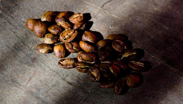 Pause café dans les Yungas
