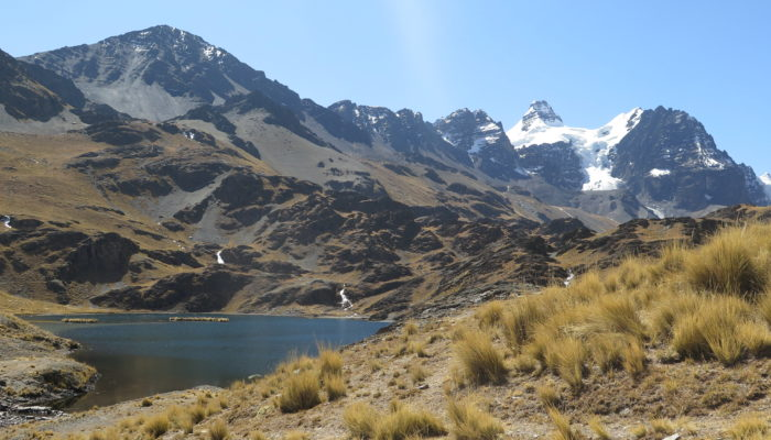 LA PAZ - RINCONADA - LAGUNA CHIARKHOTA (4.680 m alt.)